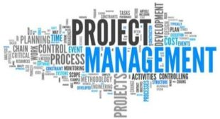 An insight into the Translation Project Manager role