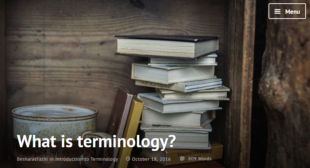 What is terminology?